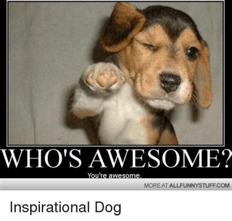 awesome memes whos awesome meme 25 best memes about whos awesome youre awesome whos