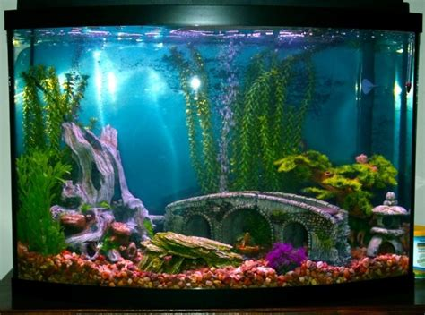 How To Decorate A Fish Tank by Best 25 Fish Tank Themes Ideas On Aquarium