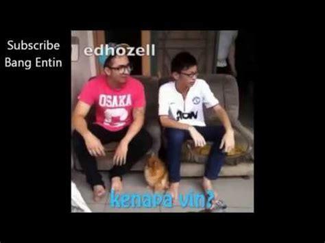 Boneka Anjing Husky By Harley Shop vlog dokter hewan doovi