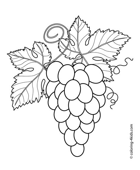 grape leaves coloring page grapes with leaves fruits and berries coloring pages for