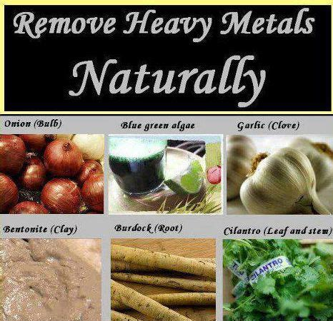 Mercury Detox Diet by 17 Best Images About When Heavy Metals Harm On