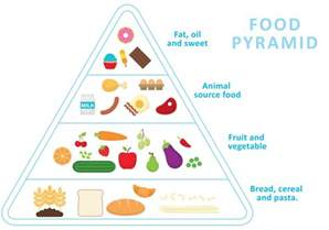 food pyramid vector download free vector art stock graphics amp images