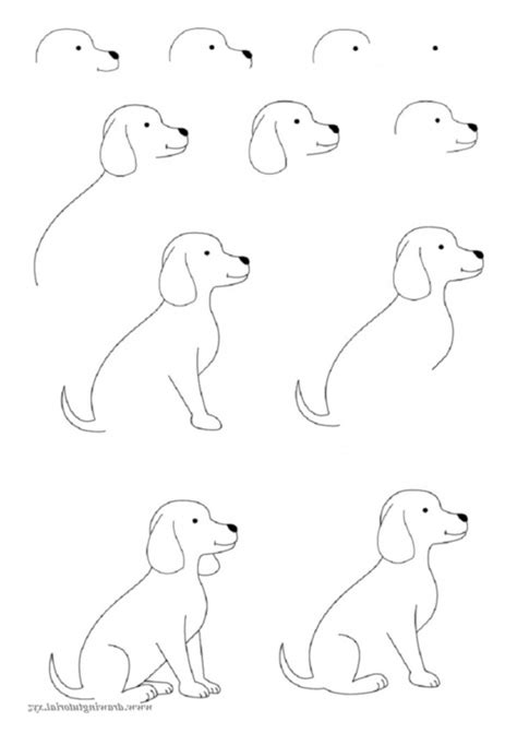 how to draw for how to draw pets for a step by step drawing book for kawaii pets dogs cats birds fishes horses pigs 9 12 boys volume 2 books how to draw easy animals photofun4ucom