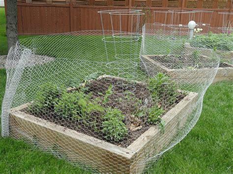 Garden With Wire Diy Chicken Wire Fencing Fence Ideas Special Chicken