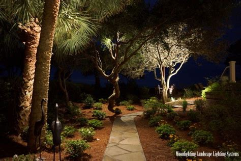 moonlighting landscape lighting moonlighting sets a sea pines landscape aglow
