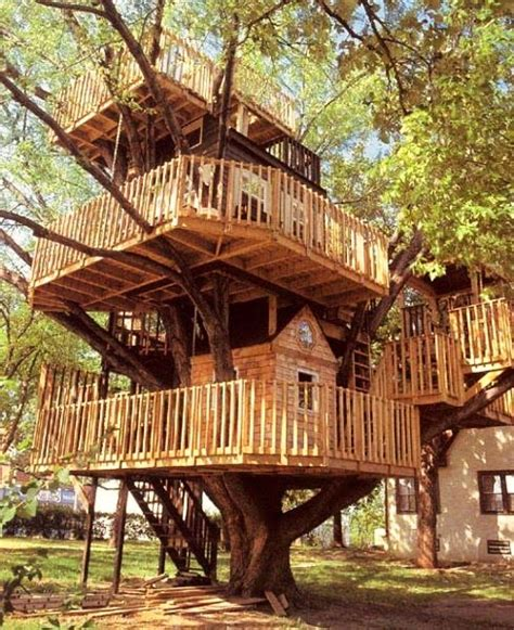 Real Life Treehouse | journey of the featherless real life treehouses
