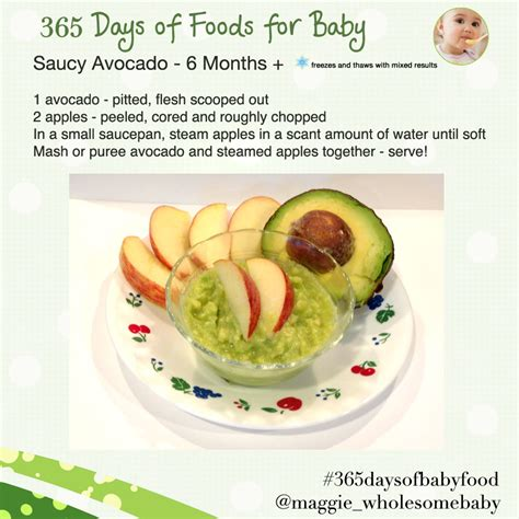 wholesome food the wholesome baby food guide to baby food make baby food with