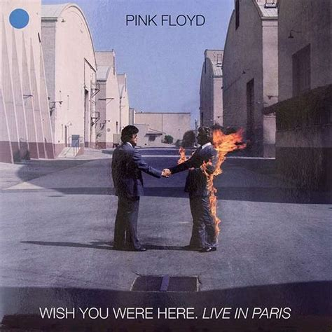 wish you were here pink wish you were here live in de pink floyd 33t chez