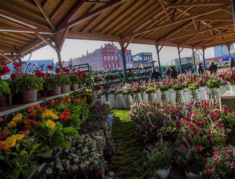 eastern market detroit christmas tree goop hometown guide liang detroit goop