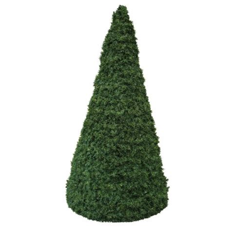 conical green tree plain visual jade
