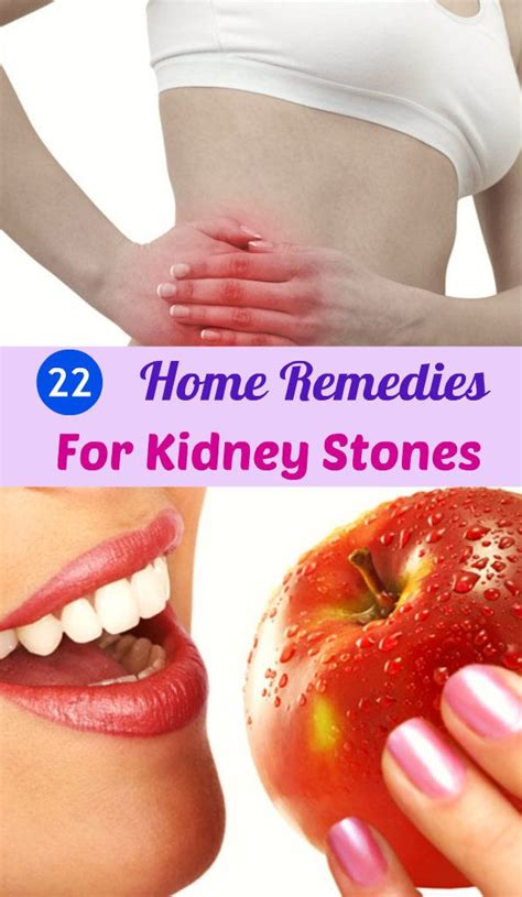 151 best images about hello kidneys on