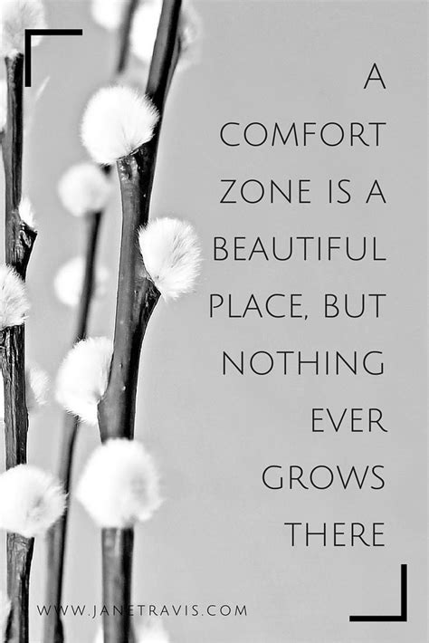 comfort zone quotes inspiration pinterest a comfort zone is a beautiful place but nothing ever
