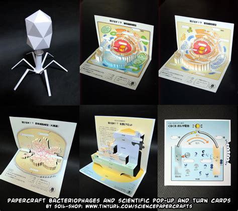 Card And Papercraft - ninjatoes papercraft weblog d l free papercraft science