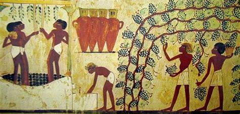 alimentazione antichi egizi dalla vite al vino
