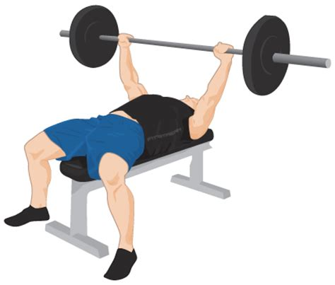 bench press free weights bench press exercise guide tips weight training
