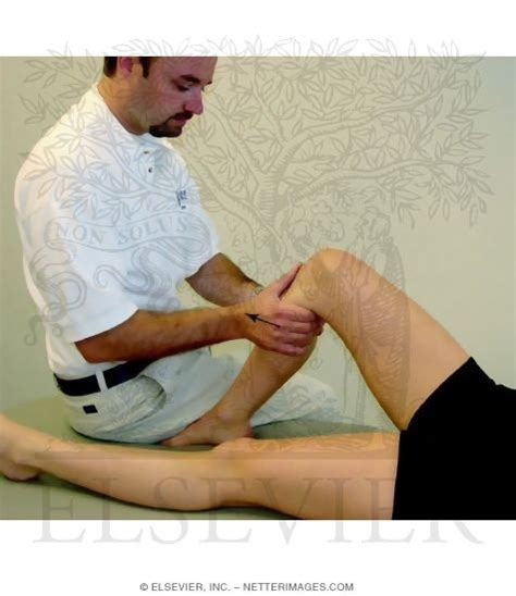 Acl Drawer Test by Detecting Anterior Cruciate Ligament Ruptures The