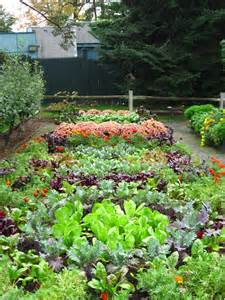 lawn or vegetable garden gardening