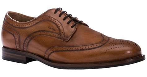 geox oxford shoes geox hstead oxford leather brogues in brown for lyst