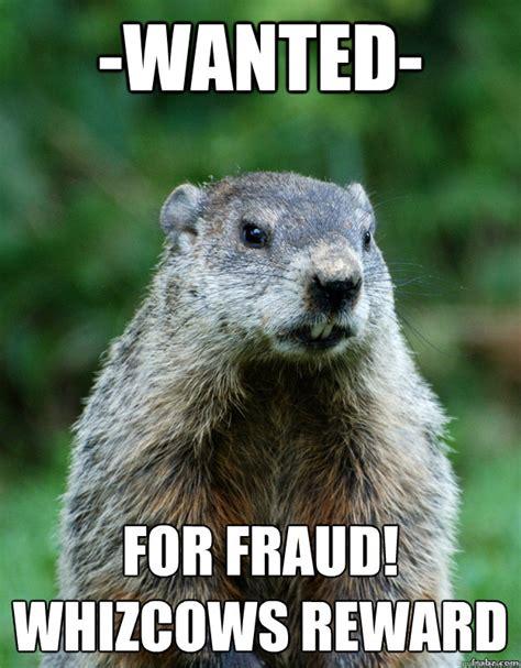 Groundhog Meme - groundhog day memes quickmeme