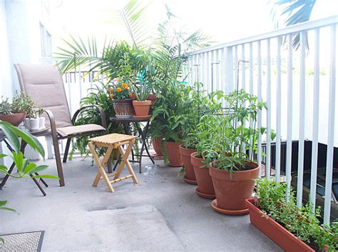 Apartment Deck Plants Balcony Gardens Prove No Space Is Small For Plants