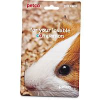 Where To Buy Petco Gift Cards - gift cards petco store