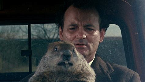 groundhog day loop don t get stuck in a groundhog day loop breaking out of a