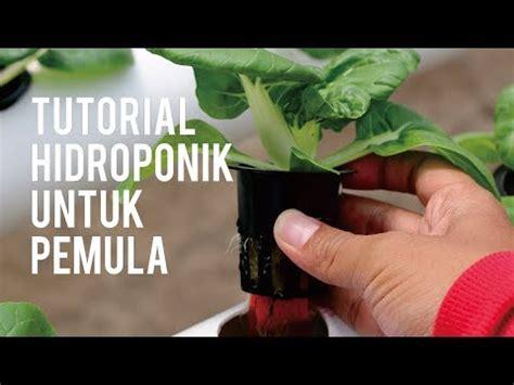 tutorial merajut untuk pemula youtube tutorial hidroponik untuk pemula youtube