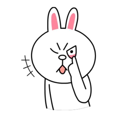 Brown Cony 03 18 best images about brown and cony on