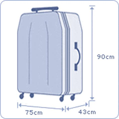 airlines baggage info surma sky travels