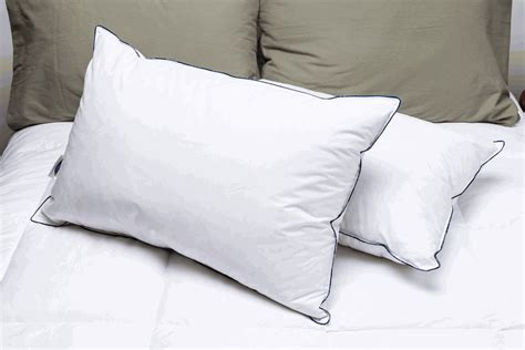 Pillow Retailers by Pacific Coast Around Pillow Pillows