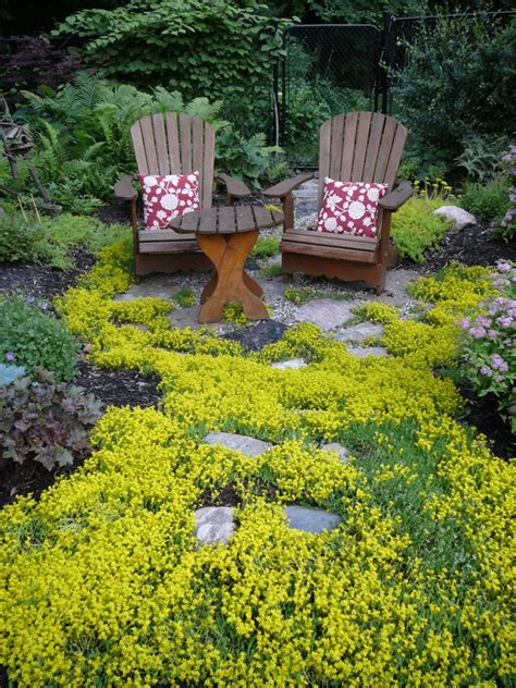 backyard ground cover ideas ground cover ideas http lomets