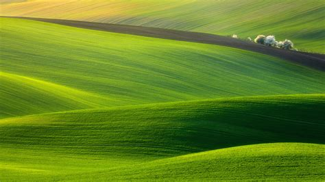 wallpaper green field spectacular green field high definition wallpapers hd