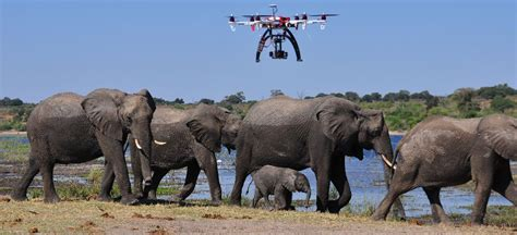 overkill the race to save africa s wildlife books new technologies helping africa s wildlife a by