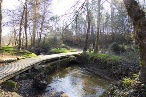 camino portugues camino portugu 233 s camino de santiago en galicia web oficial