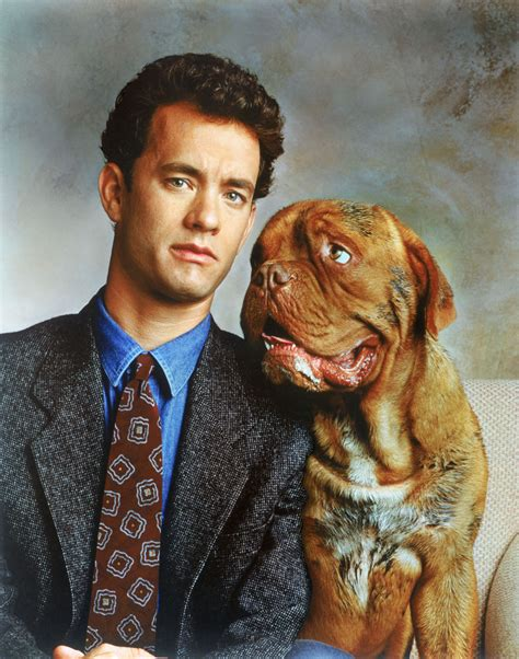 what of is turner and hooch turner hooch tom hanks photo 34677718 fanpop