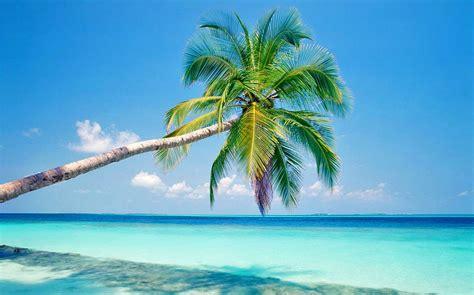 Lada Playa Valentin Imperial Cancun Lada Travel