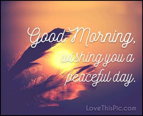 good morning wishing   peaceful day quote pictures   images  facebook tumblr