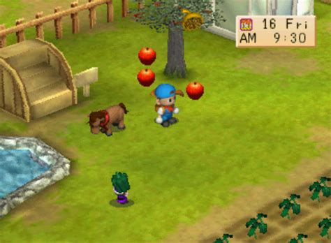 Bibit Harvest Moon Back To Nature harvest moon back to nature no emulator bahasa indonesia