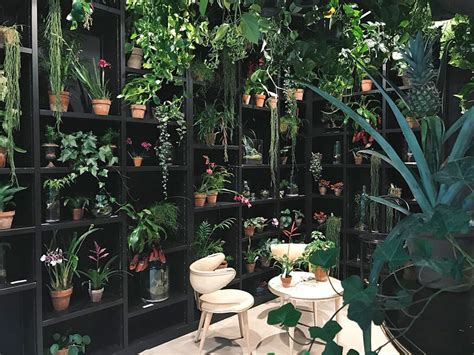 jardin secret jardin secret hotel 224 th 232 me 224 bruxelles
