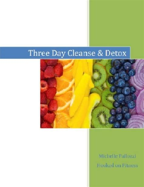 Http Skinnyms Three Day Cleanse Detox by Three Day Cleanse Detox By Pallozzi Nook Book