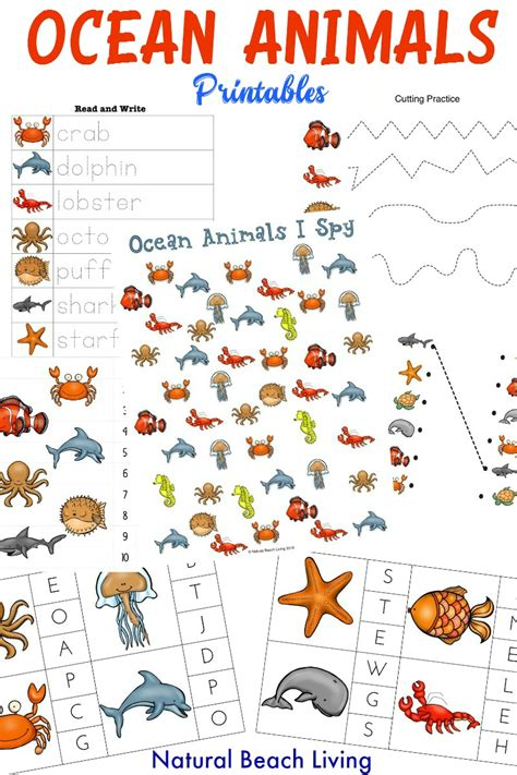 oceans activities worksheets printables and lesson plans the best ocean animals preschool activities and printables