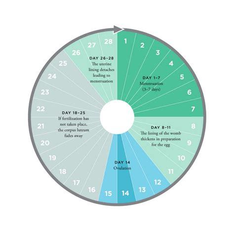 Free Printable Fertility Chart