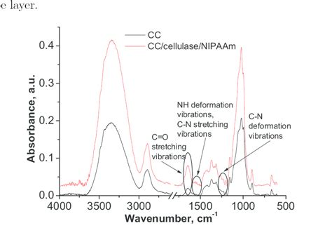 Research Papers On Chitin Degrading Enzymes by Ftir Spectra Of Cellulose Chitin Mix Fibers And Enzyme Activated Nipaam Modified Fibers