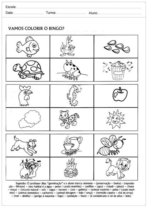 40 Atividades sobre o Meio Ambiente para Educação Infantil