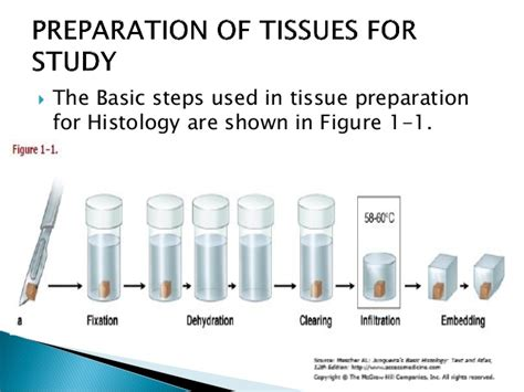 Sectioning In Histology by Histology Introduction 1