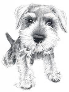 white schnauzer sweetheart rose card coloring page first grade