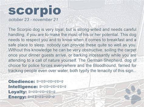 187 astrologywizard com dog horoscopes