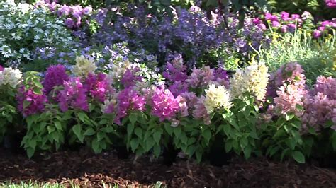 low maintenance tips u ideas and plants for easy gardening plant beautiful low maintenance beds borders youtube