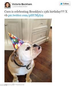 Restock Beckham Coco 1207 beckhams coco gets in on s birthday festivities daily mail