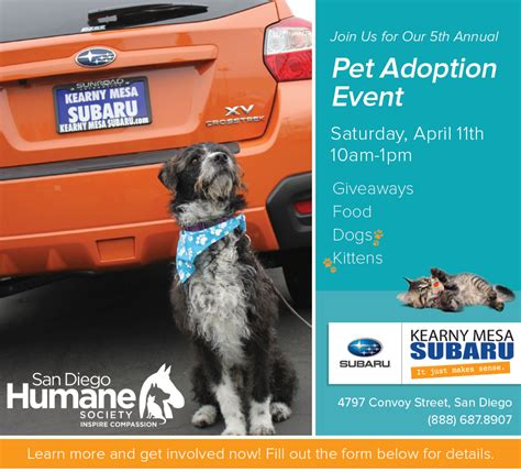 puppy adoption san diego kearny mesa subaru s 5th annual pet adoption event in san diego california